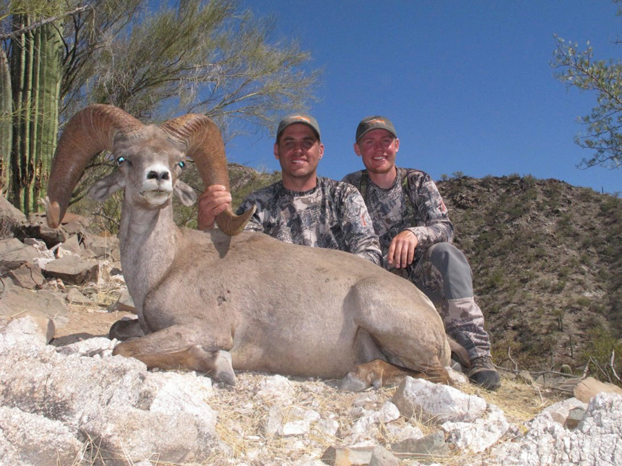 Backcountry-BC-Beyond-Bighorn-Stone-Dall-Desert-Sheep-Hunting-Outfitter282