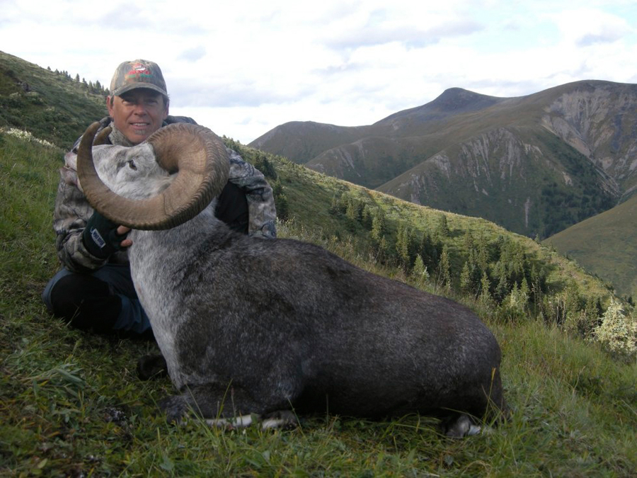 Backcountry-BC-Beyond-Bighorn-Stone-Dall-Desert-Sheep-Hunting-Outfitter306