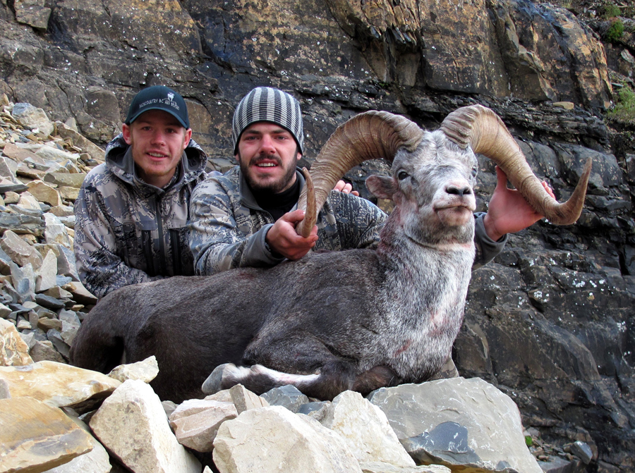 Backcountry-BC-Beyond-Bighorn-Stone-Dall-Desert-Sheep-Hunting-Outfitter319