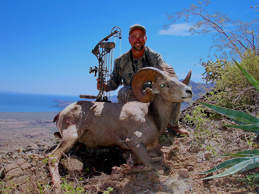 Backcountry-BC-Beyond-Bighorn-Stone-Dall-Desert-Sheep-Hunting-Outfitter335
