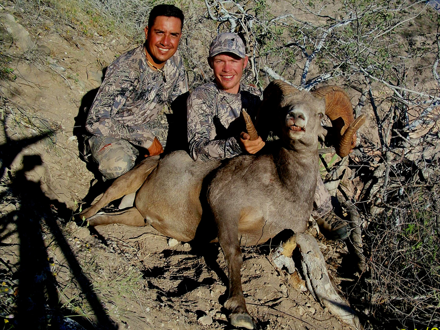 Backcountry-BC-Beyond-Bighorn-Stone-Dall-Desert-Sheep-Hunting-Outfitter342