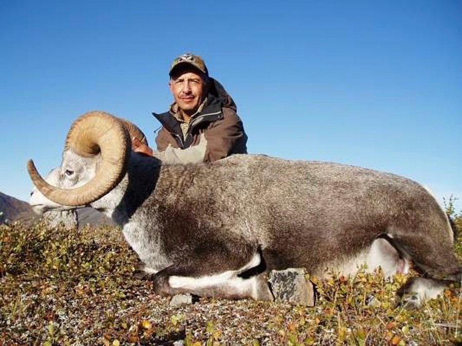 Backcountry-BC-Beyond-Bighorn-Stone-Dall-Desert-Sheep-Hunting-Outfitter348