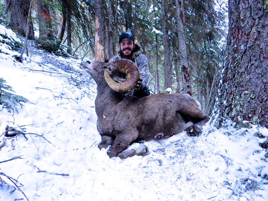Backcountry-BC-Beyond-Bighorn-Stone-Dall-Desert-Sheep-Hunting-Outfitter354