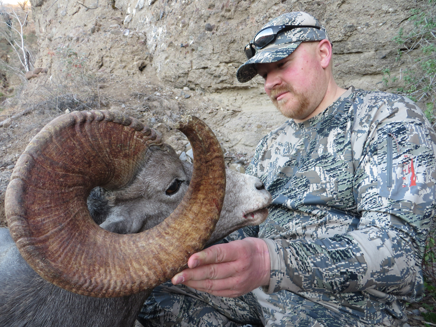 Backcountry-BC-Beyond-Bighorn-Stone-Dall-Desert-Sheep-Hunting-Outfitter362