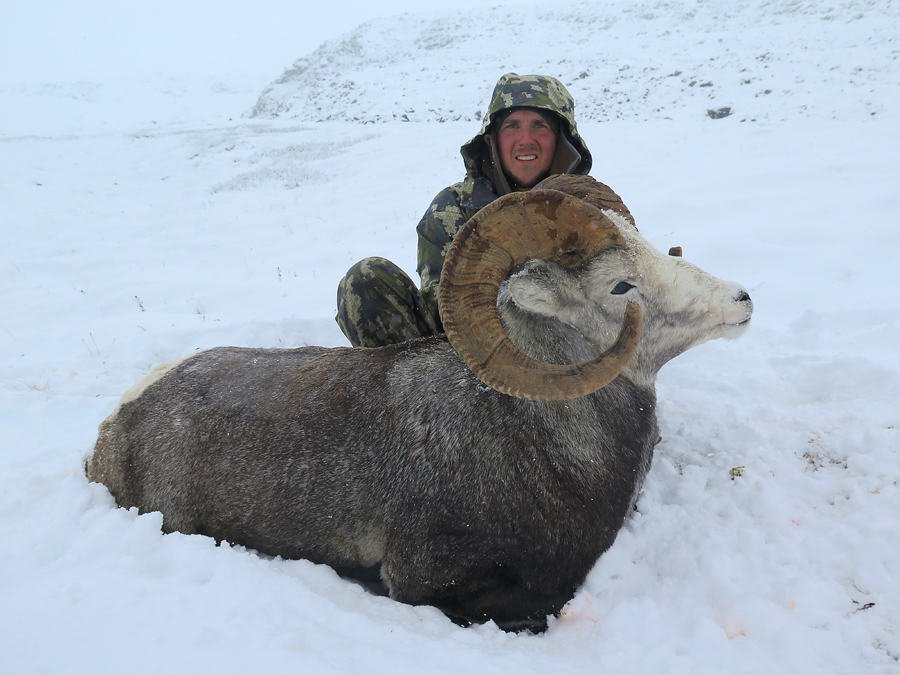 Backcountry-BC-Beyond-Bighorn-Stone-Dall-Desert-Sheep-Hunting-Outfitter368