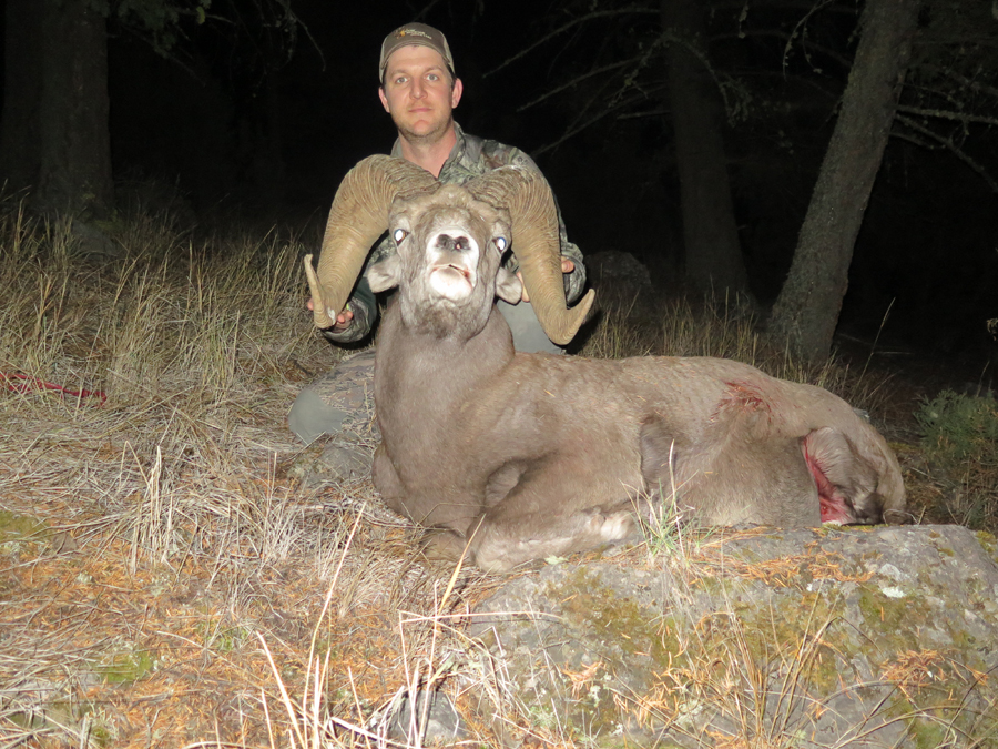 Backcountry-BC-Beyond-Bighorn-Stone-Dall-Desert-Sheep-Hunting-Outfitter375