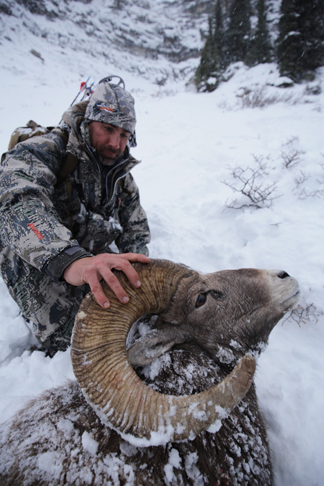 Backcountry-BC-Beyond-Bighorn-Stone-Dall-Desert-Sheep-Hunting-Outfitter376