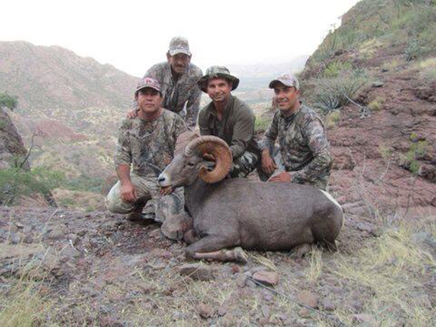 Backcountry-BC-Beyond-Bighorn-Stone-Dall-Desert-Sheep-Hunting-Outfitter383