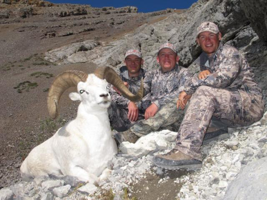 Backcountry-BC-Beyond-Bighorn-Stone-Dall-Desert-Sheep-Hunting-Outfitter398