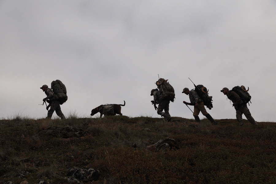 Backcountry-BC-Beyond-Hunts-BC-NWT-Alberta-Yukon-Alaska050