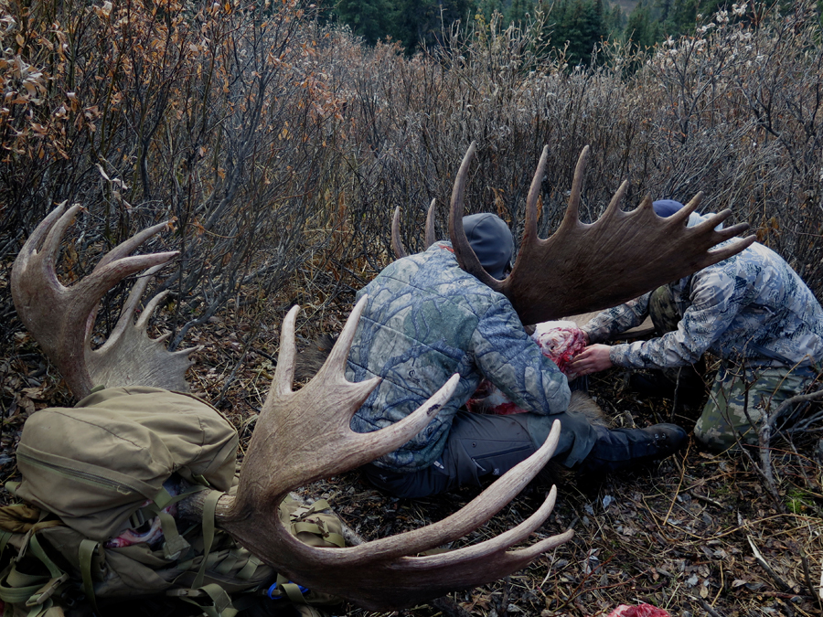Backcountry-BC-Beyond-Moose-Outfitter-Hunting-Alaska-Canada063