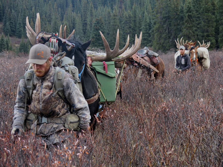 Backcountry-BC-Beyond-Moose-Outfitter-Hunting-Alaska-Canada065